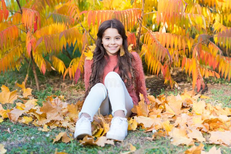 Sunny weekend. Autumn warm. Stylish smiling girl in a autumn park. Fallen leaves. Autumn nature. Happy small kid. Outdoors play with leaves. Girl sit relaxing royalty free stock photography