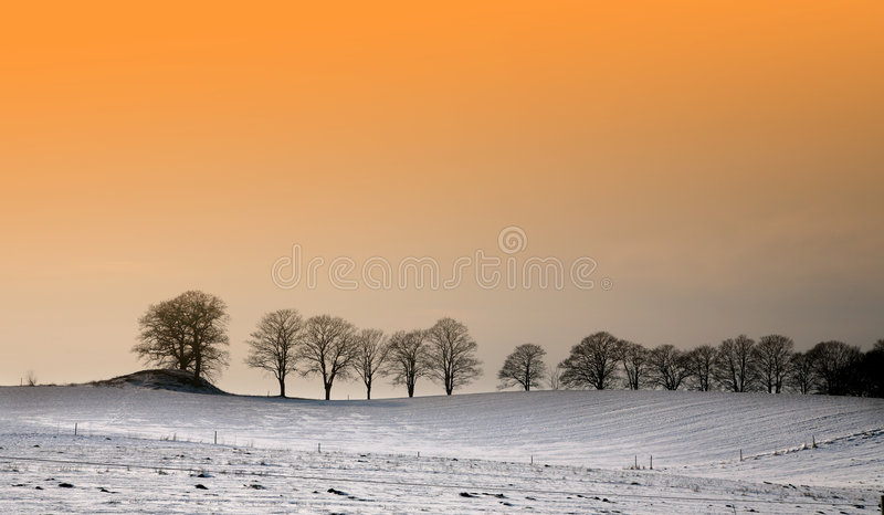 Sunny winter stock photography