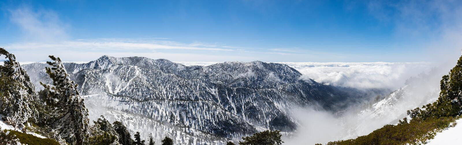 Sunny winter day with fallen snow and a sea of white clouds on the trail to Mt San Antonio (Mt Baldy), Los Angeles county, stock image