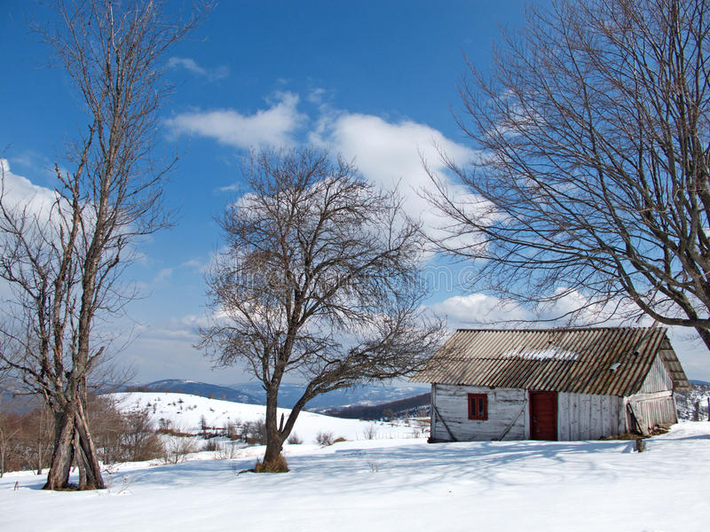 Sunny, winter day with snow and mountain lonely cottage. Sunny winter landscape on the Pester plateau with snow on mountain slopes and cottages stock images