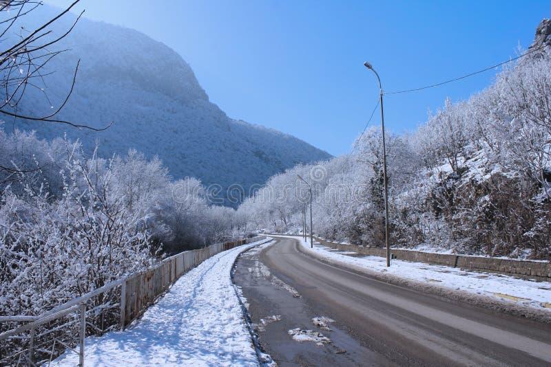 Sunny Winter Landscape fotografia stock