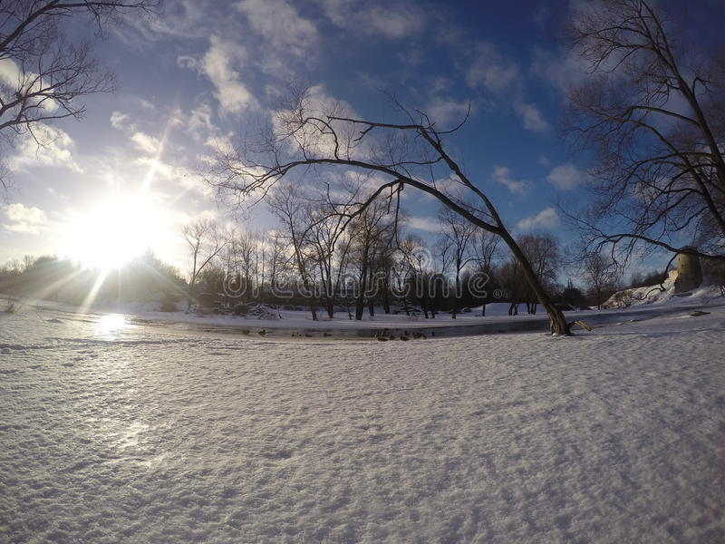 Sunny Winter Landscape royalty-vrije stock fotografie