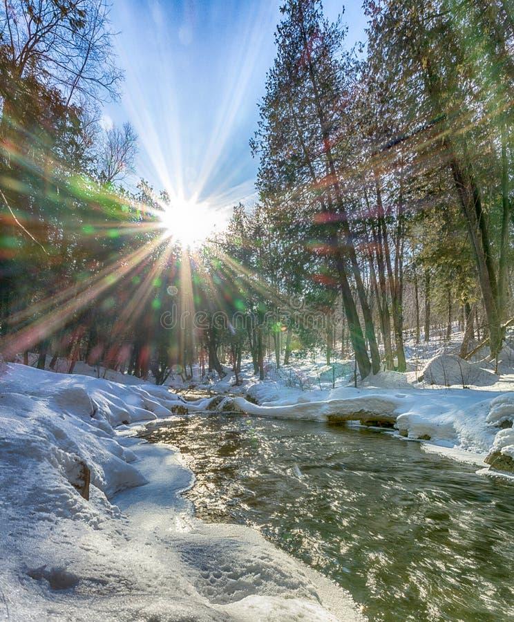 Sunny Winter Morning en el río Snake fotografía de archivo