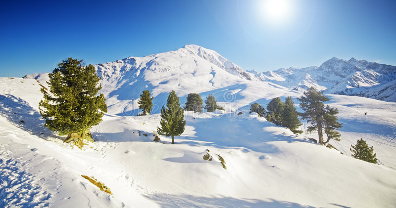 Sunny winter mountain lanscape. With trees stock photos
