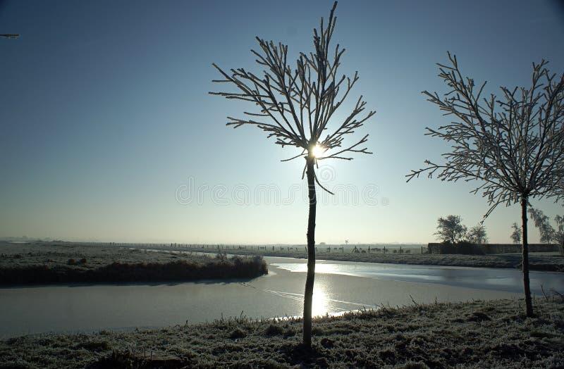 Sunny winterday royalty free stock image