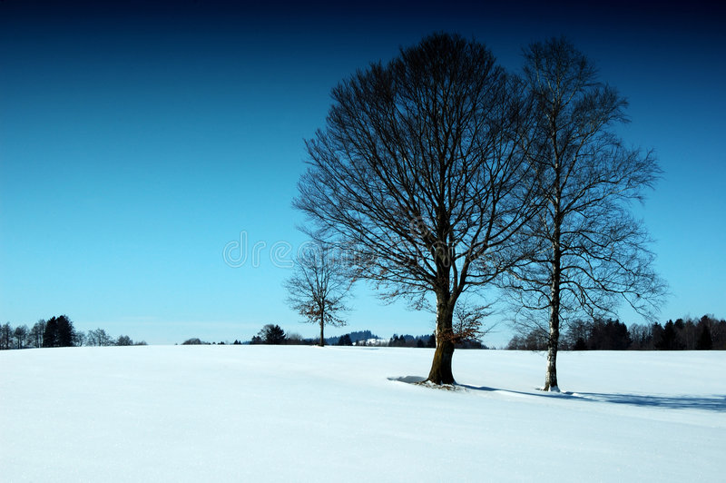 Sunny wintertime. Melancholy place in Bavarian royalty free stock photos