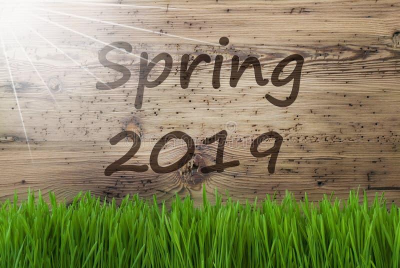 Sunny Wooden Background gräs, engelsk textvår 2019 arkivbilder