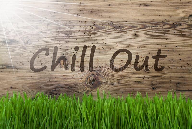 Sunny Wooden Background, Gras, Text kühlen heraus stockfotografie