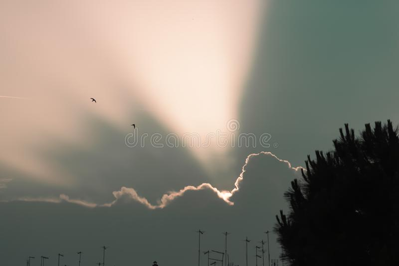 Sunrays emerge trough the clouds in a sky at dawn royalty free stock photo