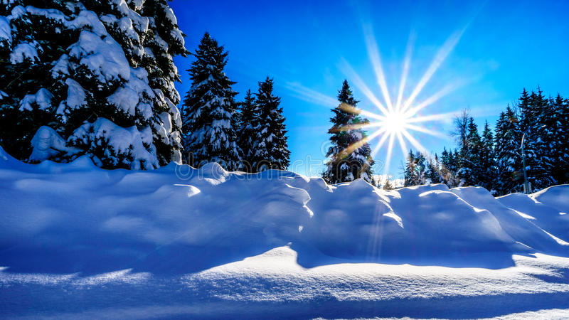 Sunrays from the low winter sun over a deep snow pack stock images