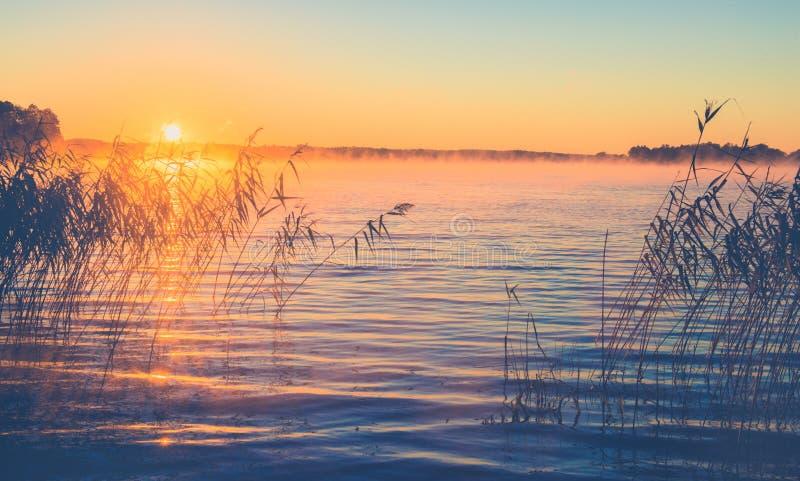 Sunrise有薄雾的湖 免版税库存照片