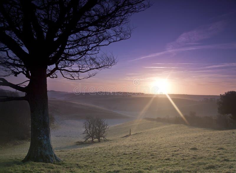 Download Sunrise stock photo. Image of dorset, winter, hiking - 23134108