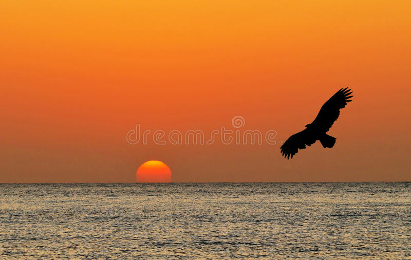 Download Sunrise Stock Photos - Image: 23454333