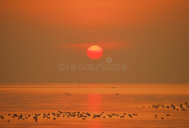 Download Sunrise stock photo. Image of bright, travel, lake, sunset - 25493282