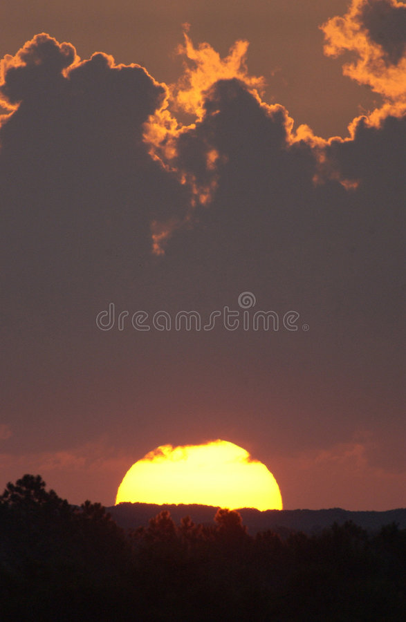 Download Sunrise stock photo. Image of light, pink, trees, sunny - 3322034
