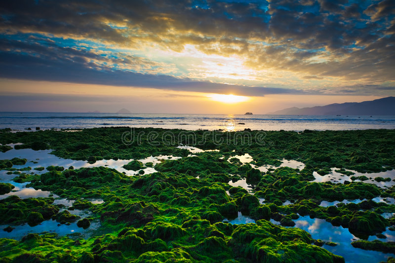 Download Sunrise stock photo. Image of nature, ocean, reflection - 8734128