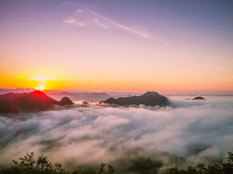 Sunrise aan de berg mist stock fotografie