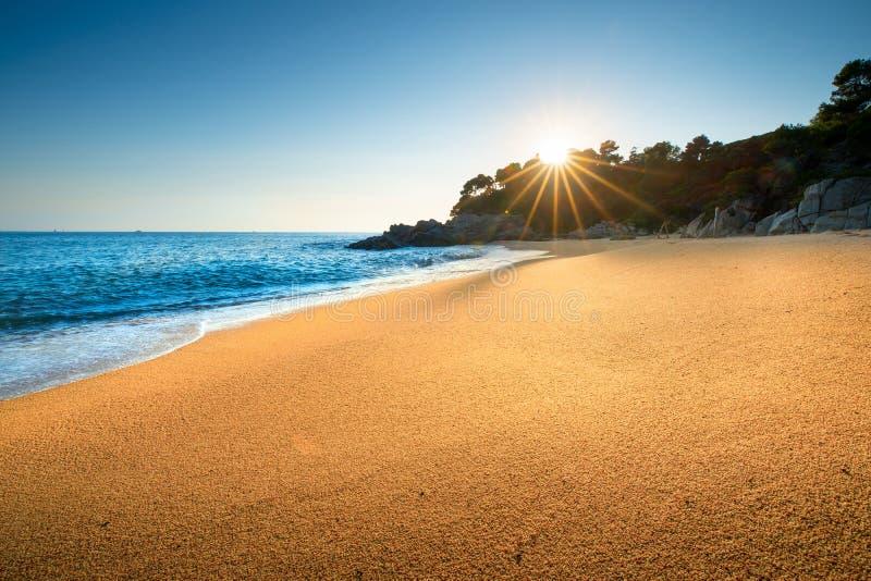 Sunrise aan de kust royalty-vrije stock afbeelding
