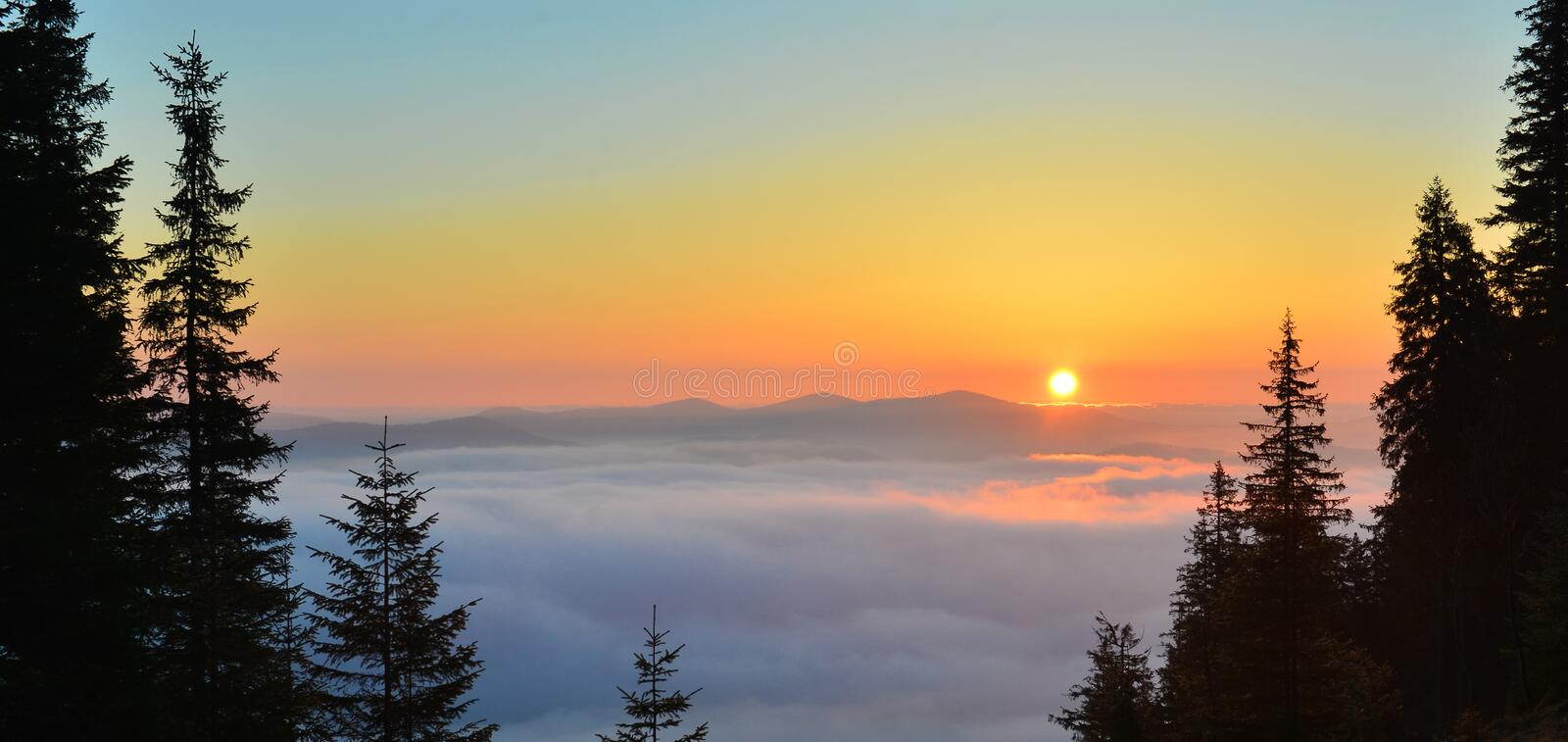 Sunrise above spring forest and picturesque cloudscape. Rising Sun above spring forest and picturesque cloudscape.Landscape with conifer firest in the morning stock photo