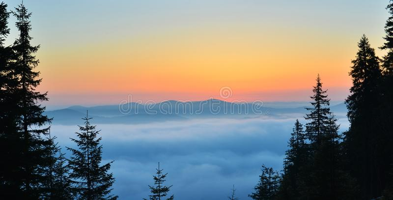 Sunrise above spring forest and picturesque cloudscape. Landscape with conifer firest in the morning royalty free stock photos