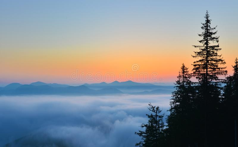 Sunrise above spring forest and picturesque cloudscape. Landscape with conifer firest in the morning royalty free stock photo