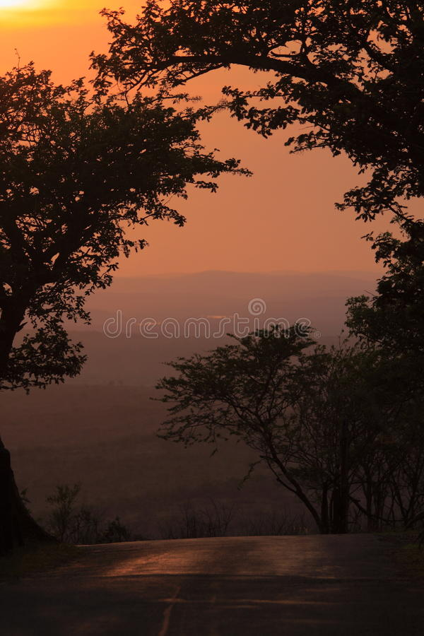 Download Sunrise In The African Bush Stock Image - Image: 47799131