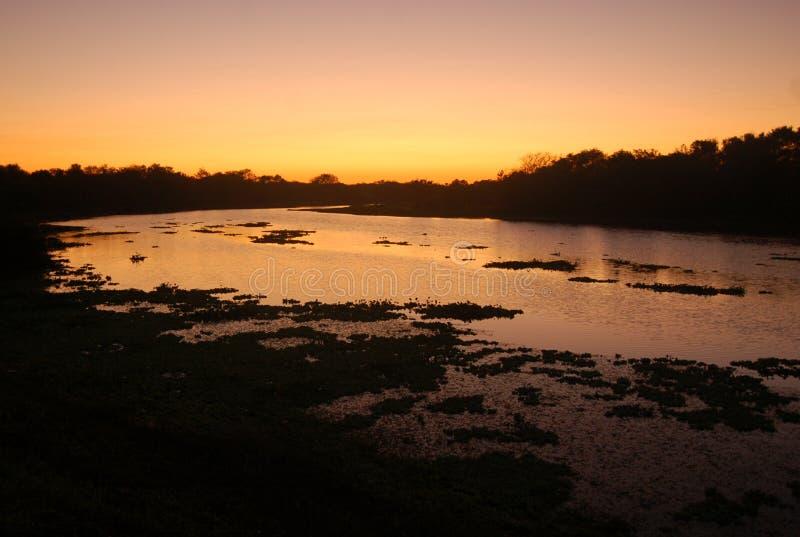 Download Sunrise in Argentina stock photo. Image of landscape, dawn - 2319612