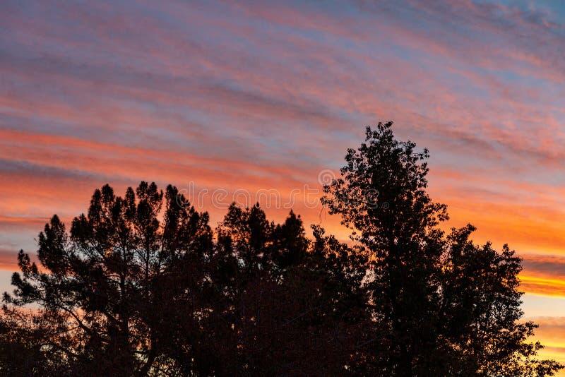 Sunrise in the desert southwest near Mesa, Arizona. Awesome sunrise in the desert southwest of Arizona stock photos