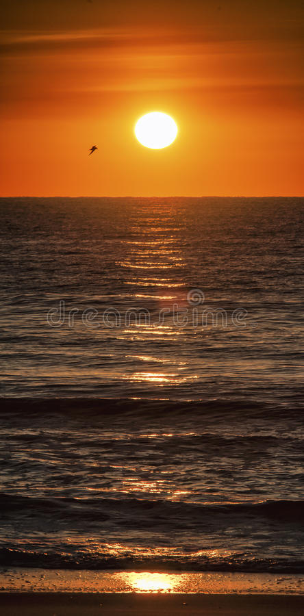 Sunrise, Atlantic Ocean, at Summer`s End stock images
