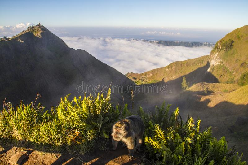Sunrise on Batur volcano - Bali stock photos