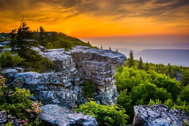 Sunrise at Bear Rocks Preserve, in Dolly Sods Wilderness, Monon royalty free stock image