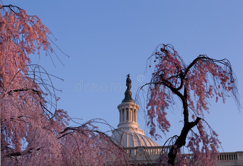 Sunrise Behind The Dome Of The Capitol In DC Royalty Free Stock Photography