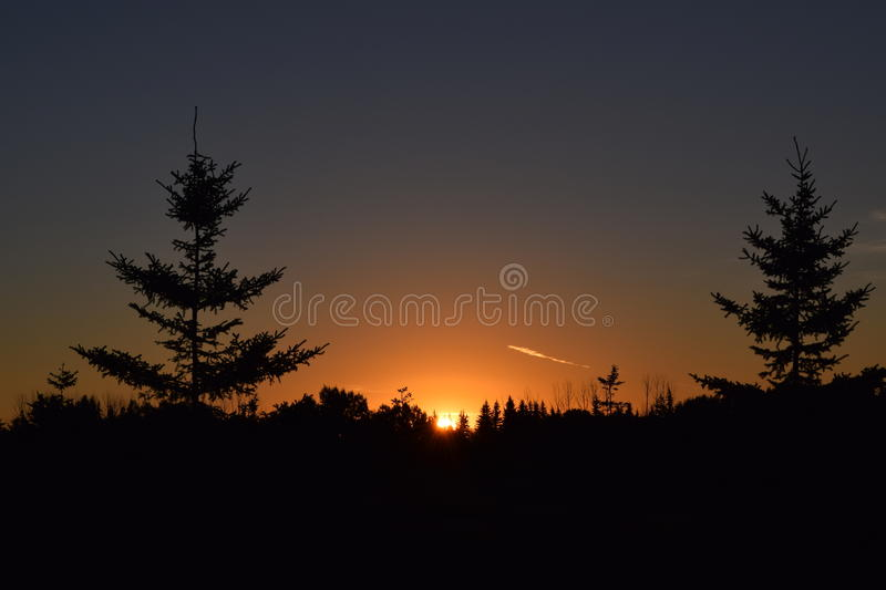 Silhouettes. Beautiful orange glow as the sun rises over silhouettes of trees royalty free stock images