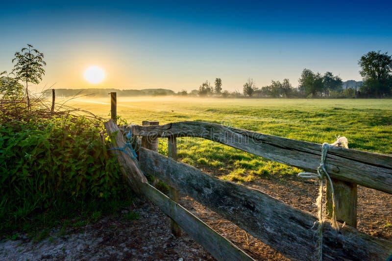 Sunrise Bieslandse Polder Delfgauw Hollande image stock