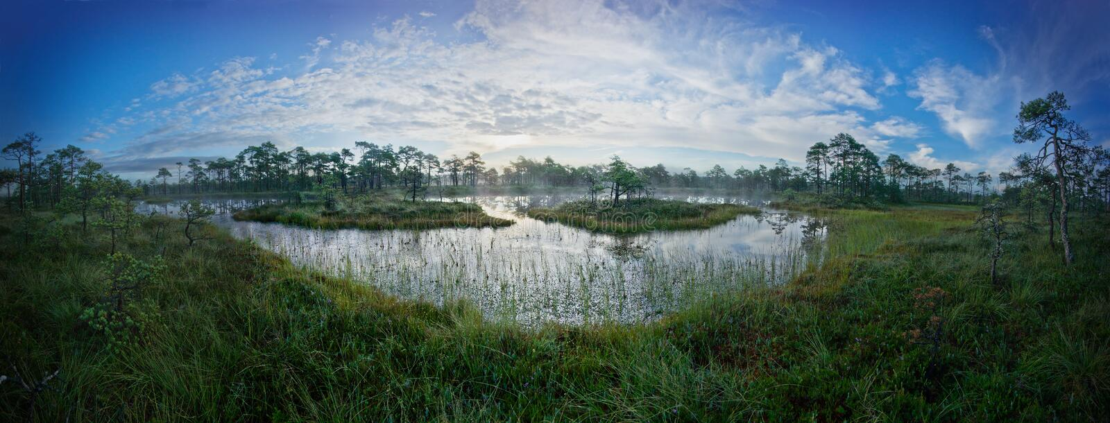 Sunrise in the bog. Icy cold marsh. Frosty ground. Swamp lake and nature. Freeze temperatures in moor. Muskeg natural environment. stock photos