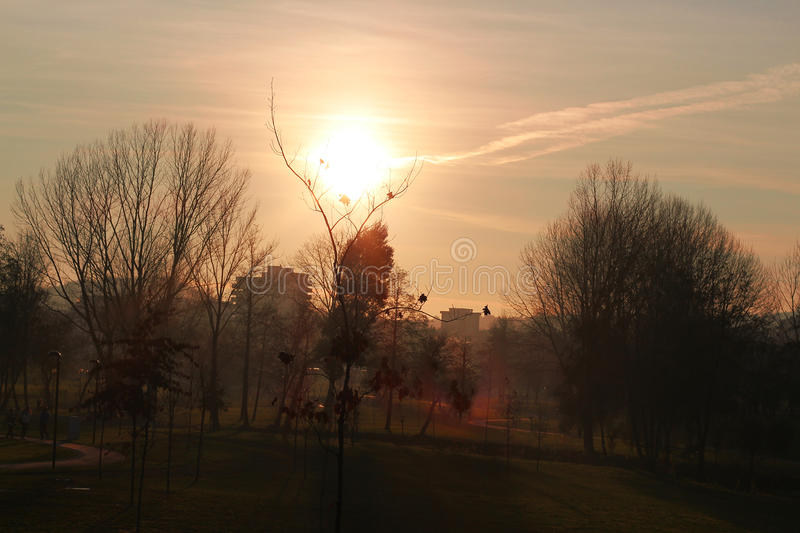 Sunrise calm life in a natural park, countryside at sunset. royalty free stock photography