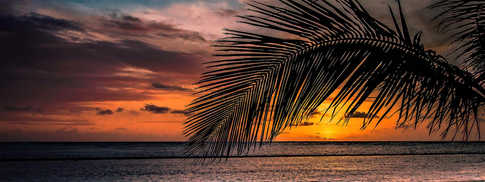 Sunrise in Caribbean, The New Day Starts royalty free stock images