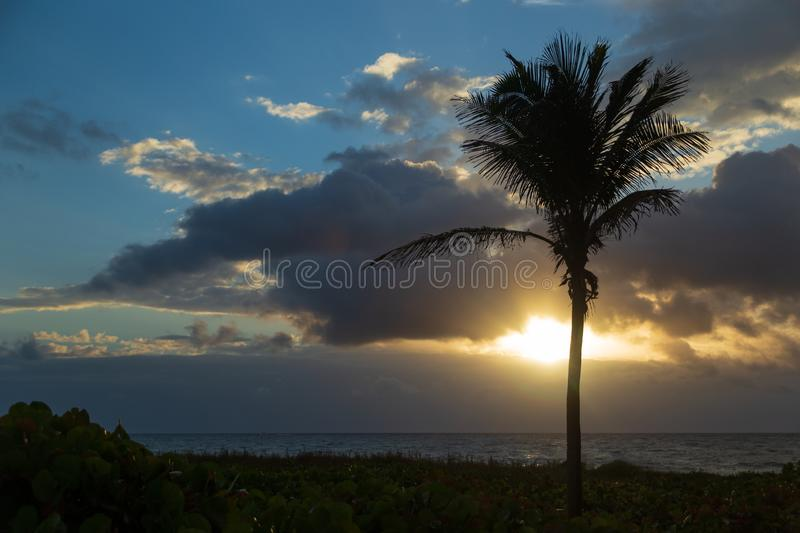 Sunrise through the clouds at dawn on Delray Beach in Florida. The sun peaks through clouds dramatically at dawn on Delray Beach in Florida with a beautiful palm royalty free stock photography