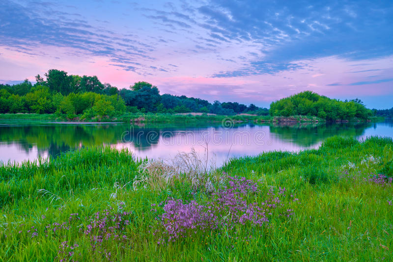sunrise countryside river flowers sky clouds landscape sunshine stock photo