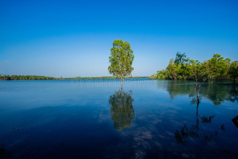 Sunrise - Dawn, Lake, Dawn, Sun, Riverbank. Flooding in rural areas. Panorama of village landscape with views of the river and the trees in the water. Flooding stock photos