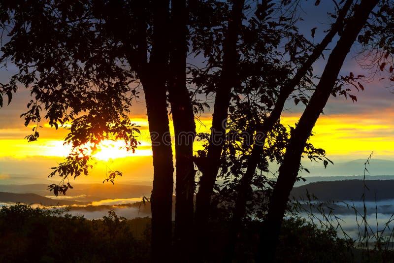 Sunrise dawning at Phu Saun Sai. Nation Park Na Haeo, Loei Province Thailand royalty free stock photography