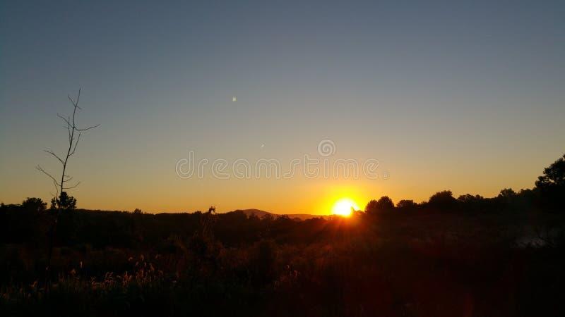 Sunrise fishing stock photography