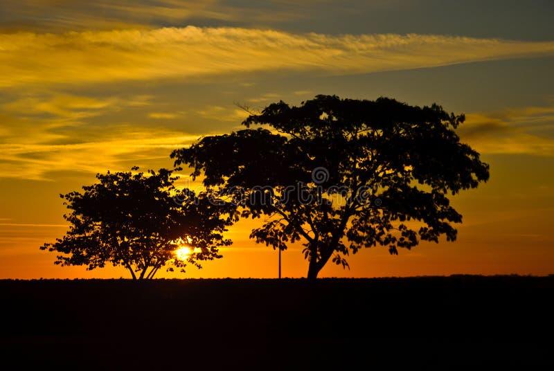 Download Sunrise in France stock image. Image of light, lion, saint - 22718303