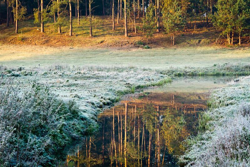 Sunrise at frozen meadow in fall stock images