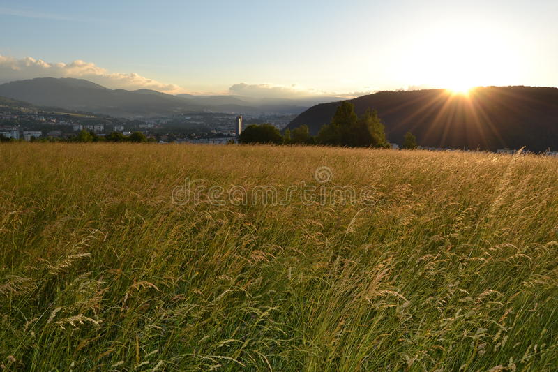 grass field sunrise. Modren Field Download Sunrise On Gold Grass Field Stock Image  Of Glade Horizon  68935761 With I