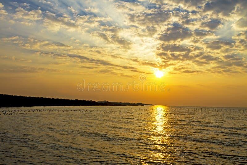 Sunrise golden on beach royalty free stock photography