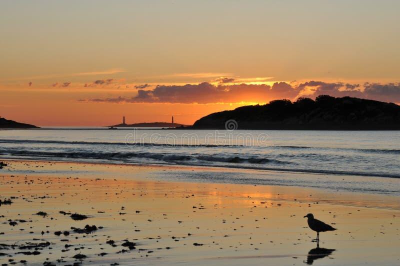 Sunrise at Good Harbor Beach stock photography