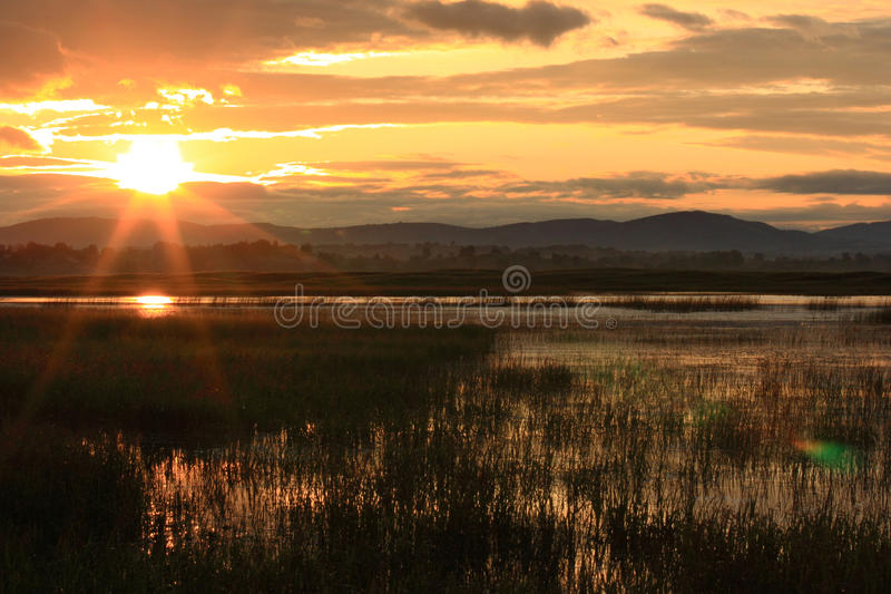 Sunrise of grassland stock photos