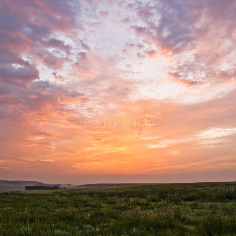 Sunrise and grassland royalty free stock photo