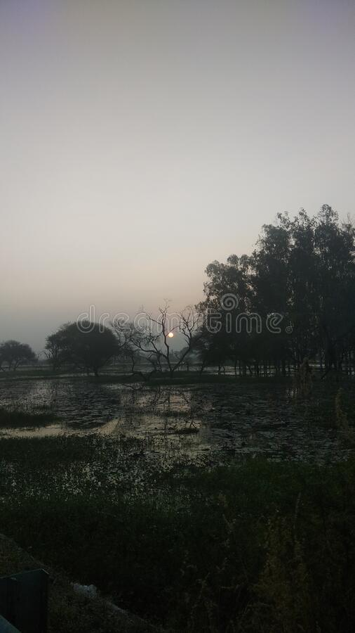 Sunrise at Gulawat a lotus cultuvation and plantation site near Indore India stock photography